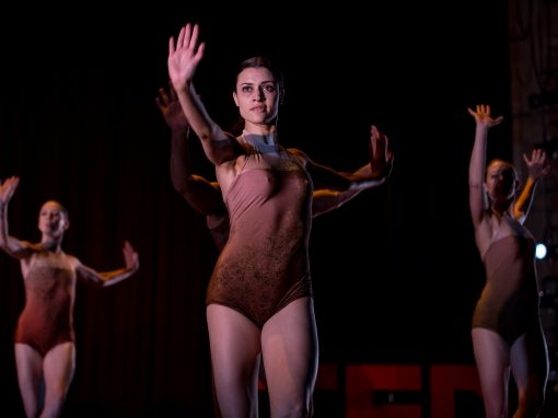 A fluid look at gravity through performance | Melissa Barak